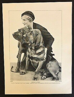 Original 1934 Dog Print / Bookplate - BLOODHOUND, Lady with 2 Bloodhounds