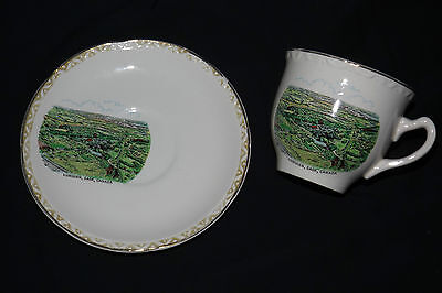 LUMSDEN CANADA Teacup & Saucer - Weatherby Hanly England Royal Falcon Ware 4/65