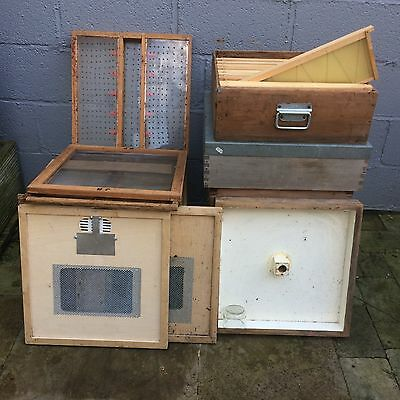 Used National Bee Hive and Equipment - Beekeeping
