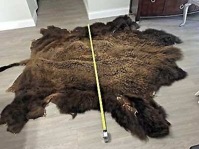 "Buffalo Hide Authentic 63"" X 8 Feet                Mint Condition"