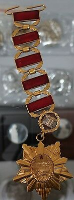 Korea Degree of Doctor Ph.D Doctor of Philosophy Insignia Badge with Chain