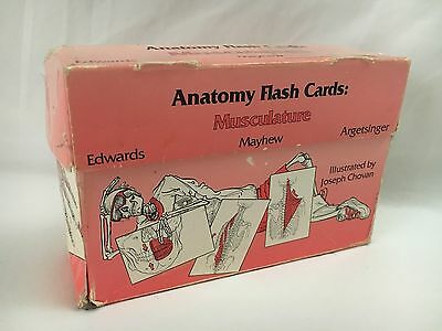 Anatomy Flash Cards - Musculature