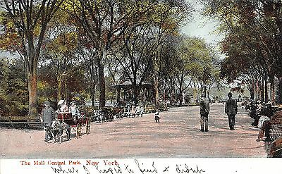 Postcard NY The Mall Central Park New York Early 1900's Vintage New York PC