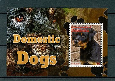 Dominica Commonwealth 2013 MNH Domestic Dogs 1v S/S Pets Rottweiler Stamps