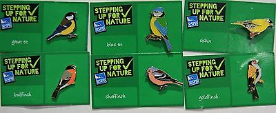 Joblot Of 6 Rspb Stepping Up For Nature Charity Badges Lot 7