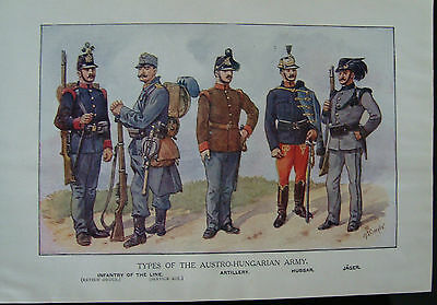 WW1 Print Types Of Austro Hungarian Army