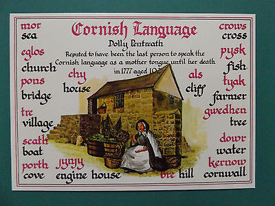 Vintage Cornish Language Cornwall Old Unused  Postcard Collectors