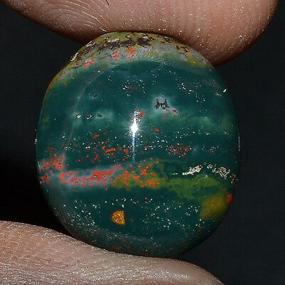 Cts. 13.75 Natural Pretty Color Bloodstone Oval Cab Beautiful Loose Gemstone