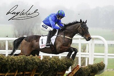 74 #  HURRICANE FLY- RUBY WALSH  SIGNED  A4 PHOTOGRAPH pp #####