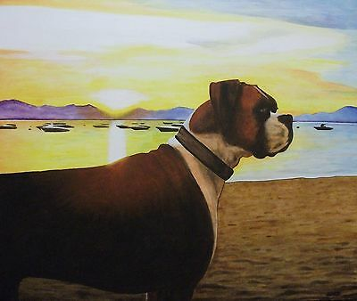 Aceo Original Art Print 'cisco The Boxer ' Signed By Artist