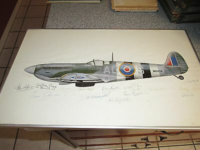 Beautiful Supermarine Spitfire Print Framed And Autographed Multi Signed