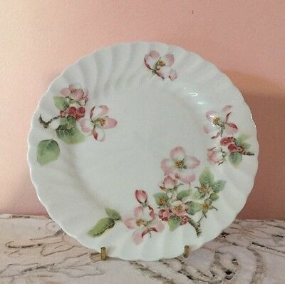 Wedgwood Apple Blossom Bread & Butter Plate 17Cm. Made In England Vintage