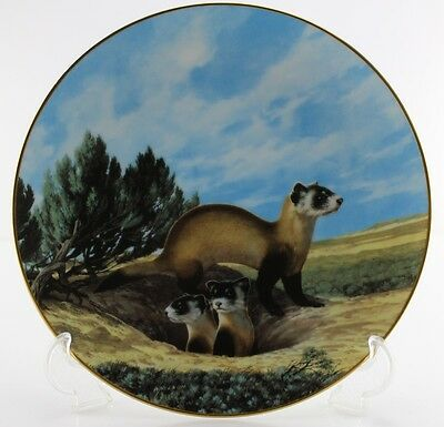 """The Black-Footed Ferret #5 """"Last of Their Kind -The Endangered Species Collec."""""""