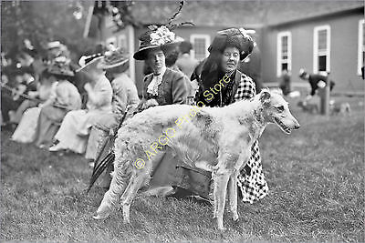 ad012 WOLFHOUND Russian Wolf Hound lady 1900s Mineola USA dog show photo