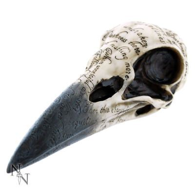 Raven Skull Edgars Inscribed Crow Head Gothic Statue Figurine Ornament