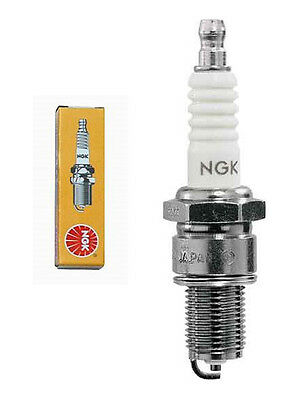 Bougie NGK D10HS
