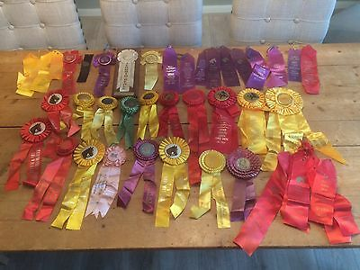 Vintage Lot Of Horse Show Ribbons