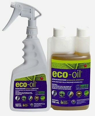 OCP ECO-OIL Organic Miticide Insecticide - Mites Aphids Scale & Whitefly Killer