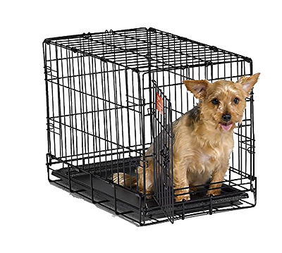 Dog Crate MidWest iCrate Folding Metal Single Door Sturdy 22 Inches with Divider