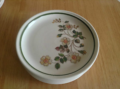 Autumn Leaves Salad Plate - Several Available Postage Discounts - M&s