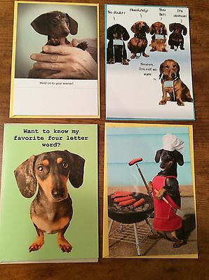 4 Dachshund Birthday Greeting Cards NEW  - Weiner Dog