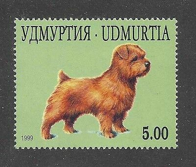 Dog Art Body Study Portrait Postage Stamp NORFOLK TERRIER Udmurtia 1999 MNH