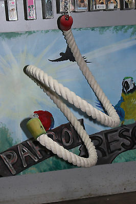 Parrot Rope Boing  toy Parrots. African Greys, Amazons Cockatoos Macaws
