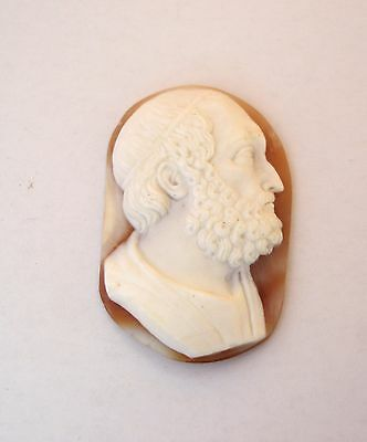 Shell Cameo 40X26 Mm Socrates, 40 X 16 Mm