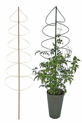 Flower Plant Support