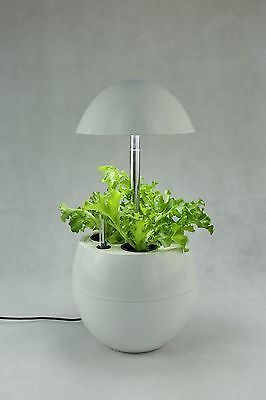 Complete Hydroponics Mini Type Garden System Self-Watering with Pump LED Lights