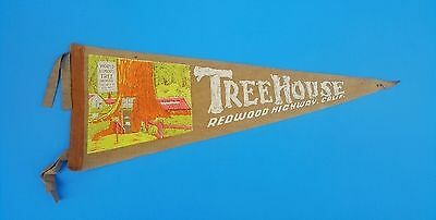"Vintage Redwood California Tree House Believe It Or Not Pennant 6.5"" x 17"""