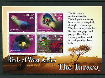 Liberia 2015 MNH Birds of West Africa Turaco 4v M/S I Turacos Stamps