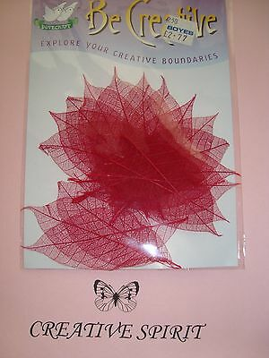 20 Red Skeletonized Leaves by Dovecraft, scrapbooking cardmaking collage crafts