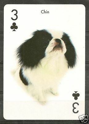 One Dog Optical Photo Collectible Playing Card JAPANESE CHIN SPANIEL Artlist