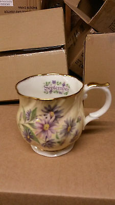 Queens China Flower of the Month September Mug.