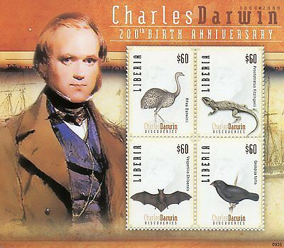 Liberia 2009 MNH Charles Darwin 200th Birth 4v M/S Birds Bats Lizards Stamps