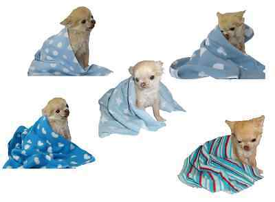 Dog Fleece Blanket BLUE small animal pet puppy cat kitten xs -s -m