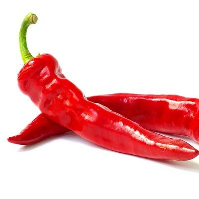 30++ Hot Portugal Pepper Seeds pepper FREE SHIPPING
