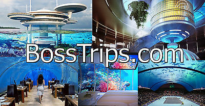BossTrips.com Top Money Making Domain Name Futuristic Travel Destinations Space