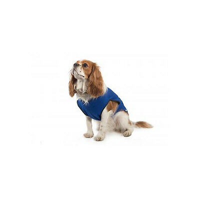Cool Dog Cooling Vest Coat - Heat Relief for Dogs in Hot Weather