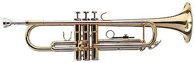 Gold Brass Trumpet Bb Tuning 3 Steel Valves Thumb Hook Mouthpiece Transport Case