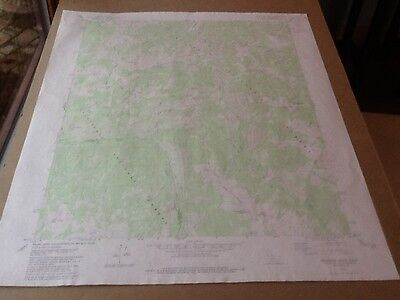 "1979 Dept Of Interior Topo Map Lot #123, Disaster Peak, Calif., 22"" X 27"""