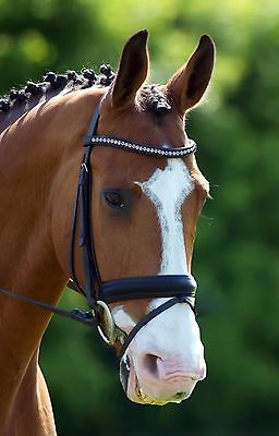 ON SALE! 40% off NEW black COB bridle - crystal browband, leather reins