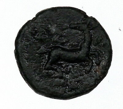 Selge Pisidia AE 2nd centry BC coin