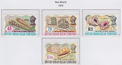 British Indian Ocean Territory 'Sea Shells' 1974 set of 4 Stamps U/Mint