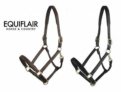 LeMieux Padded Leather Headcollar with Brass Fittings
