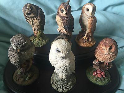 Royal Doulton Owl Collection, Wooden stand included