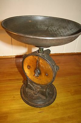 vintage salter scales, Salter's Improved Family Scale No 50, Silvesters Patent