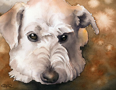 SCHNOODLE Painting Dog 8 x 10 ART Print Signed by Artist DJR