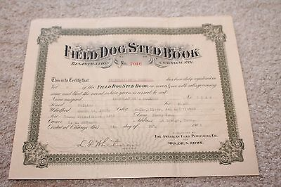 1904 La Grange TN Field Dog Stud Book Registration Certificate Llewellin Duchess